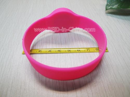 Festival Silicone Wristbands-39