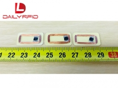 DAILY RFID Released the RFID Inlays For The Wristbands