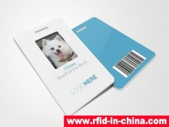 DAILY RFID released the HF RFID Pet Card for  Pet Shop Management